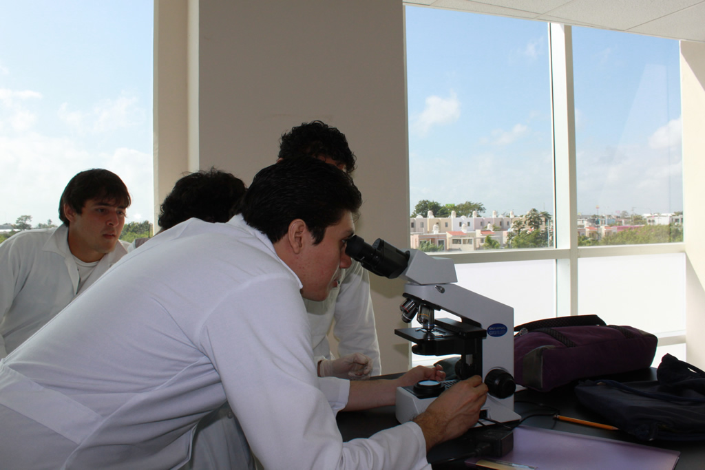 Laboratorios dcs